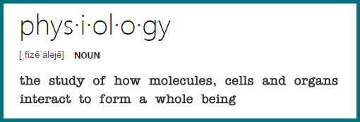 physiology - the study of how molecules, cells and organs interact to form a whole being